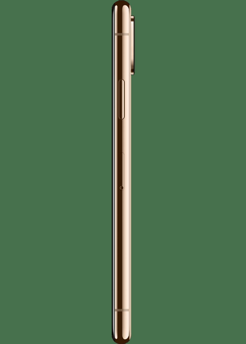 Apple Iphone Xs 64 Gb Gold Online Bestellen Congstar
